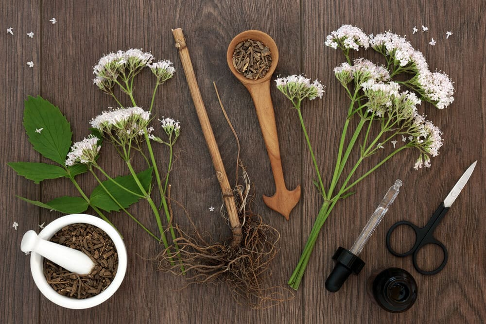 Valerian herb root and flowers with dropper bottle and mortar with pestle over oak background. Used as an alternative to valium in natural medicine; concept for valerian root as an over-the-counter sleep aid.