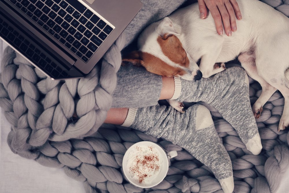 A woman sitting on a wool blanket with her dog, a laptop and a cup of coffee.