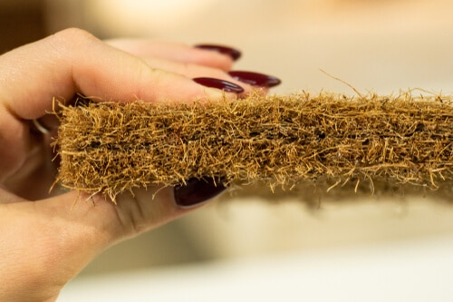Mattress filler. Coconut coir. Grated coconut shell for the production of mattresses. Background of Mattress filler.
