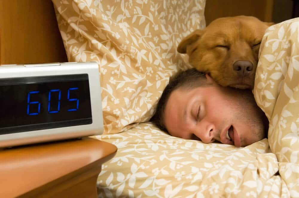 Man and his dog comfortably sleeping in after the man tries Vicks NyQuil for Sleep