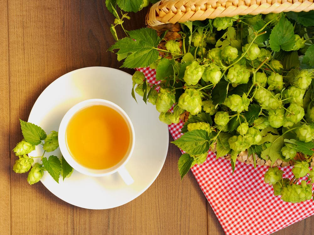 Top view of cup of hop tea, basket filled with hope blossom, wooden plank,