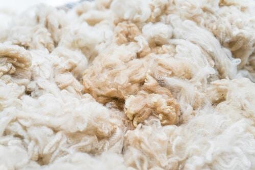 pure alpaca wool