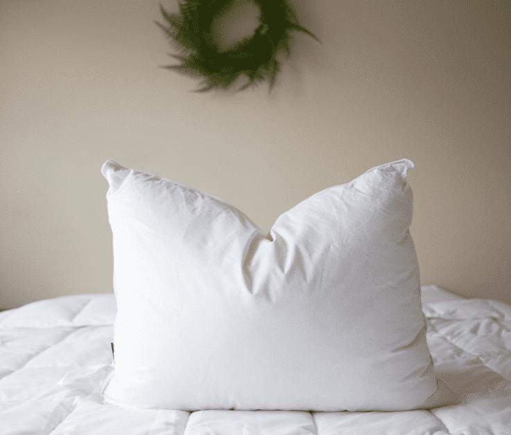 pillowtex reg 75 white duck feather 25 white duck down pillows 22